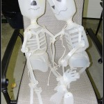 Fun Halloween At Home Craft – Recycled Skeleton's
