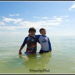 Wordless Wednesday Some Florida Favorites with Linky!