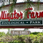 The St. Augustine Alligator Farm Zoological Park in Florida