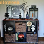 Autumn & Halloween Home Decor Ideas {My Tips & Tricks}
