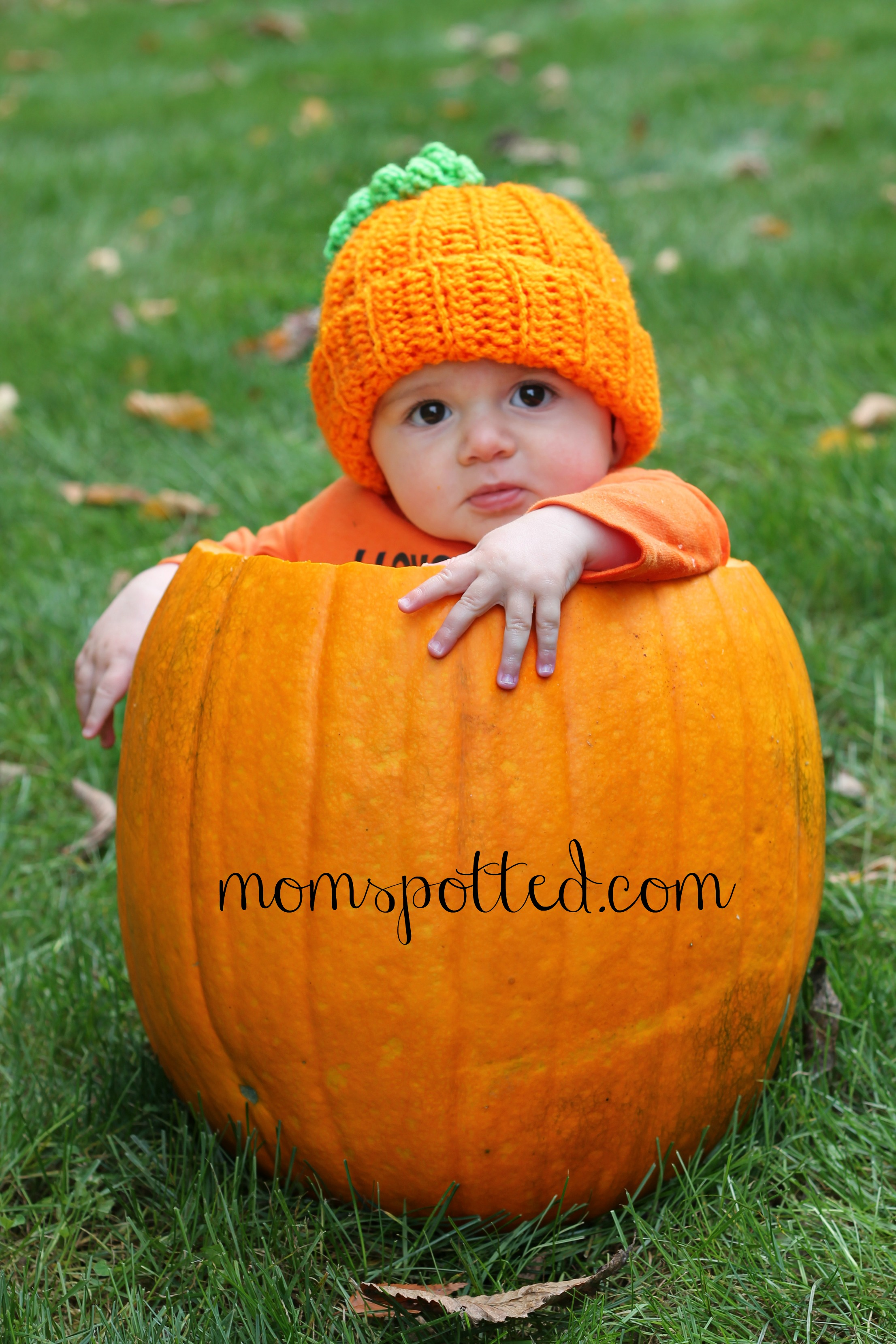 Baby Pumpkin Adorable Baby Photography Momspotted