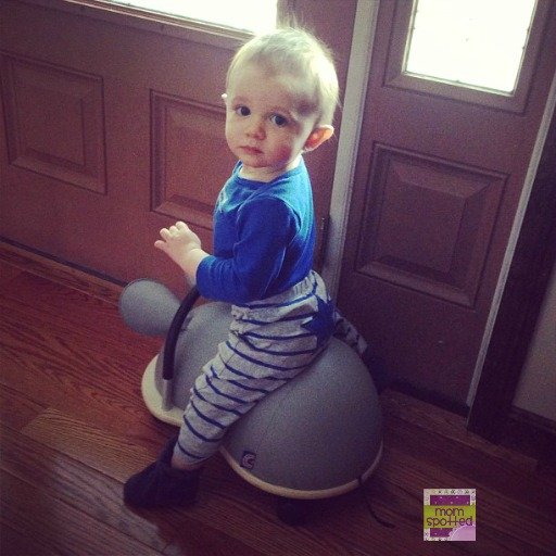 Prince Lionheart Wheely Bug 1