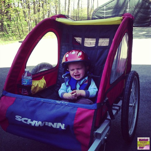 Schwinn Toddler Bike Trailer