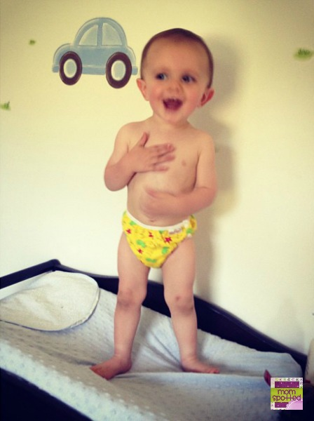 Sawyer in cloth swim diaper speedo