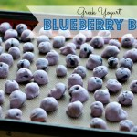 Frozen Yogurt Blueberry Bites!