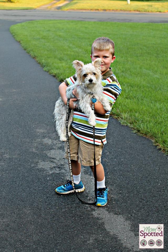 Gavin first day of 2nd grade Charlie morkie dog