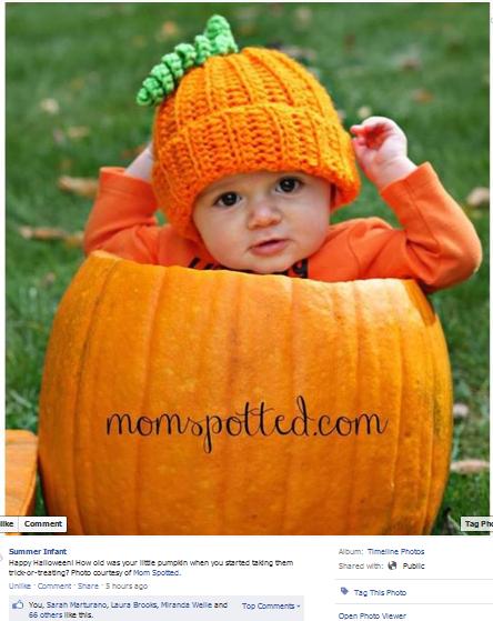 summer infant 2013 facebook feature sawyer james pumpkin photo baby