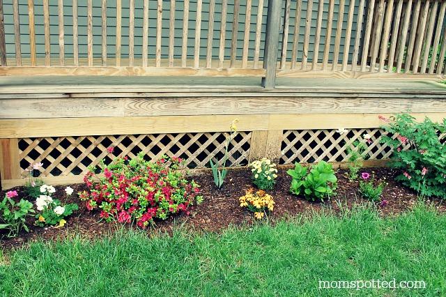 My mirroring flower bed gardens