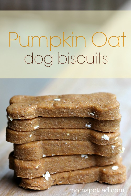 Pumpkin Oat Biscuits Your Dogs Will Be Begging For! #PumpkinCan #momspotted
