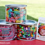 Candy Club: The PREMIER Candy of the Month Club {Review & Coupon Code}
