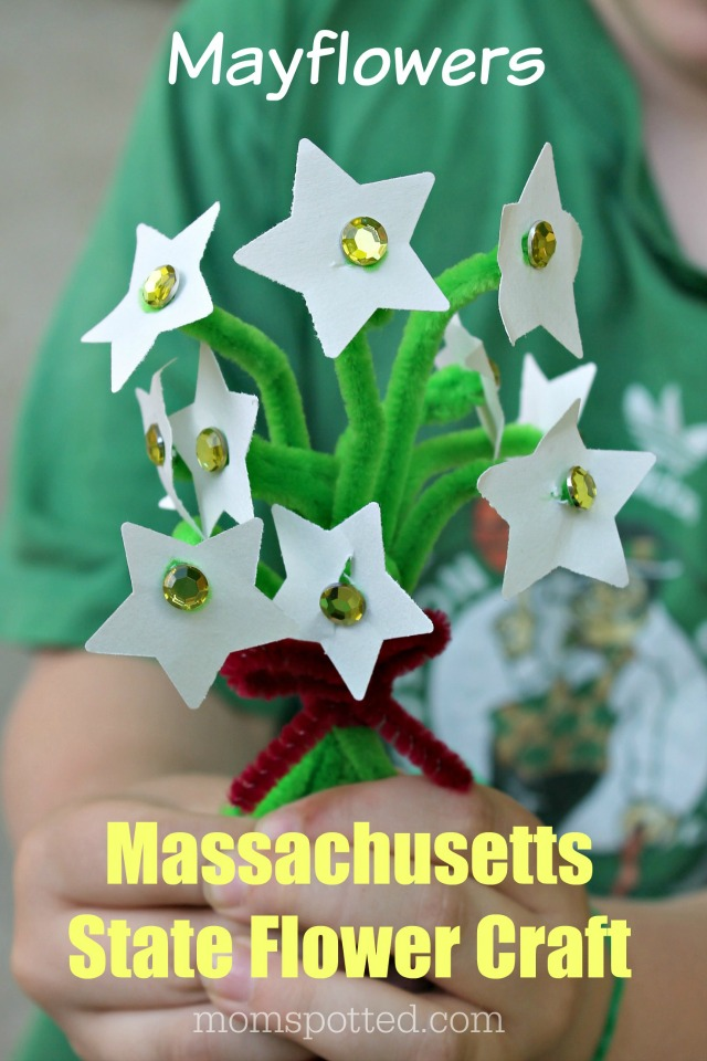 The Mayflower – A Massachusetts State Flower Craft {Fun Crafts with Mom}