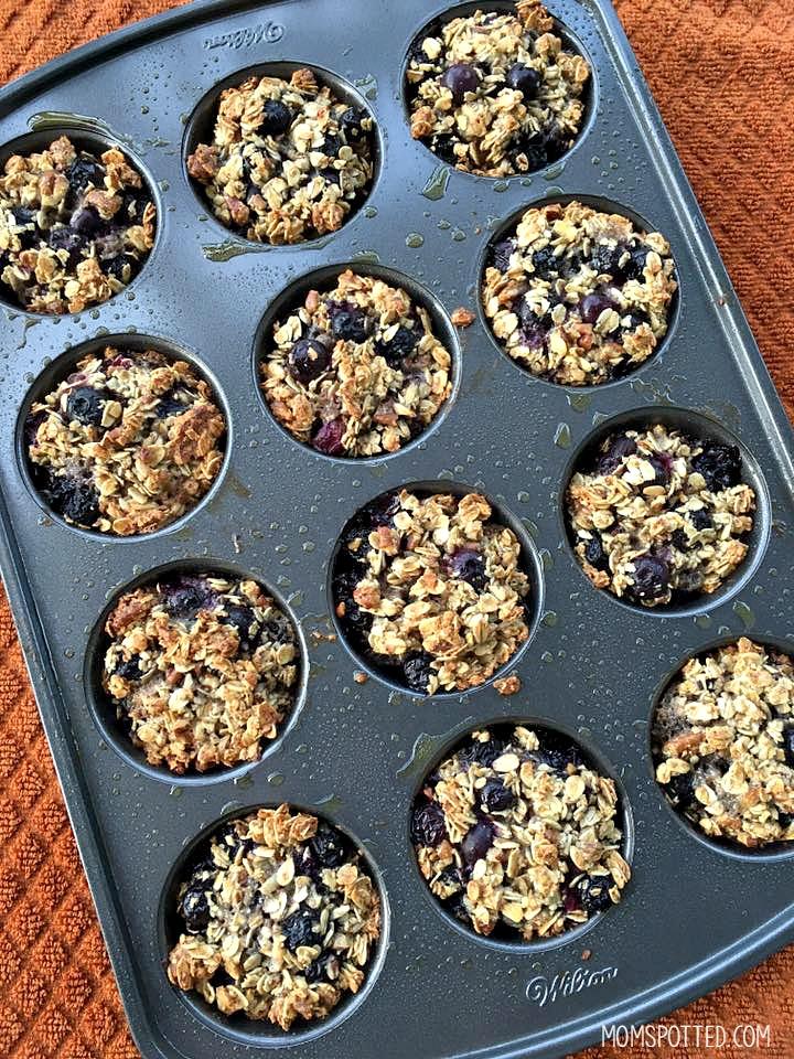 Gluten-Free Blueberry Pecan Oatmeal Muffins Recipe