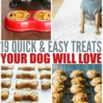 Quick & Easy Homemade Dog Treat Recipes