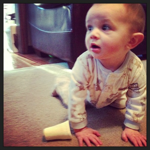 Sawyer James learns to crawl baby  #momspotted