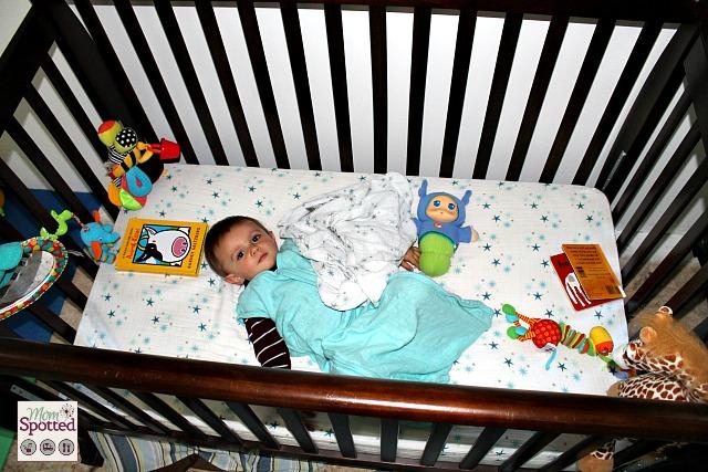 aden + anais organic crib sheets