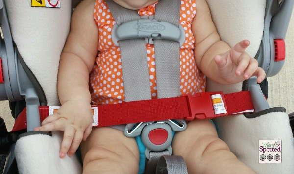 red seat belt