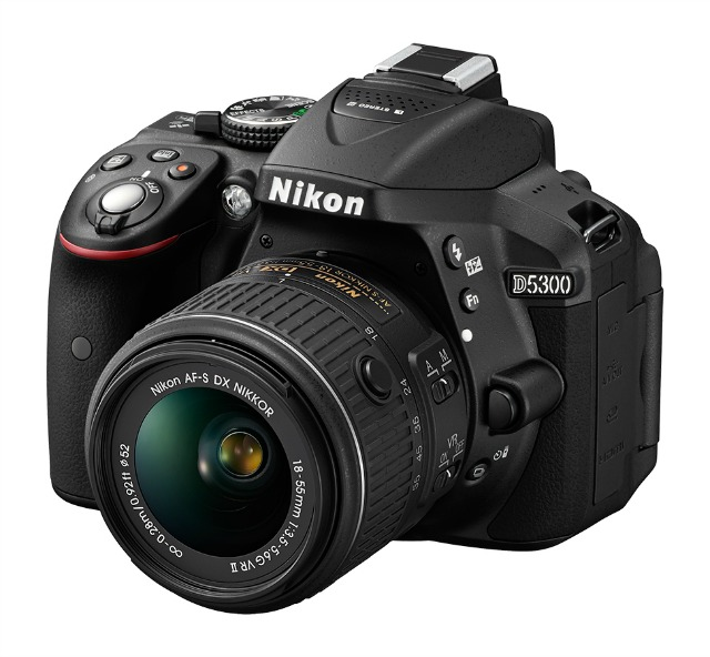 Best Buy Holiday Cameras and Camcorders