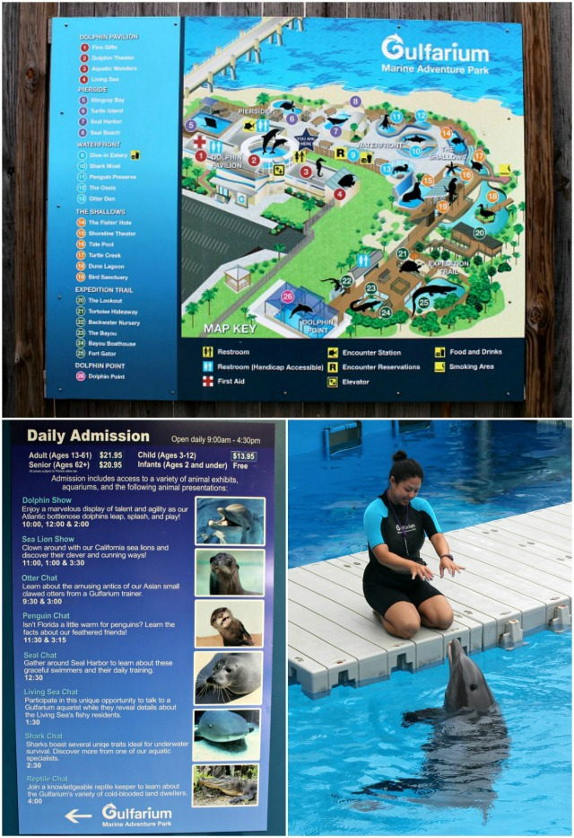 Gulfarium Marine Adventure Park Collage