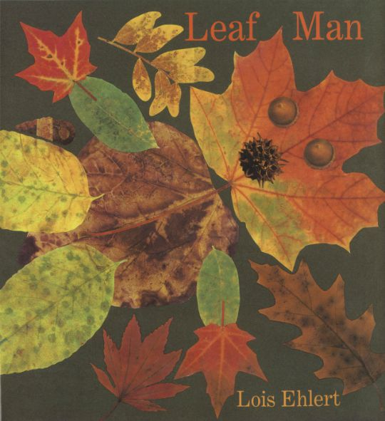 Leaf Man Hardcover