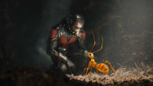 Marvels Ant Man on DMA & Blu Ray Combo Pack